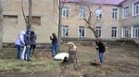 Всероссийский Экологический субботник Зеленая весна - 2018